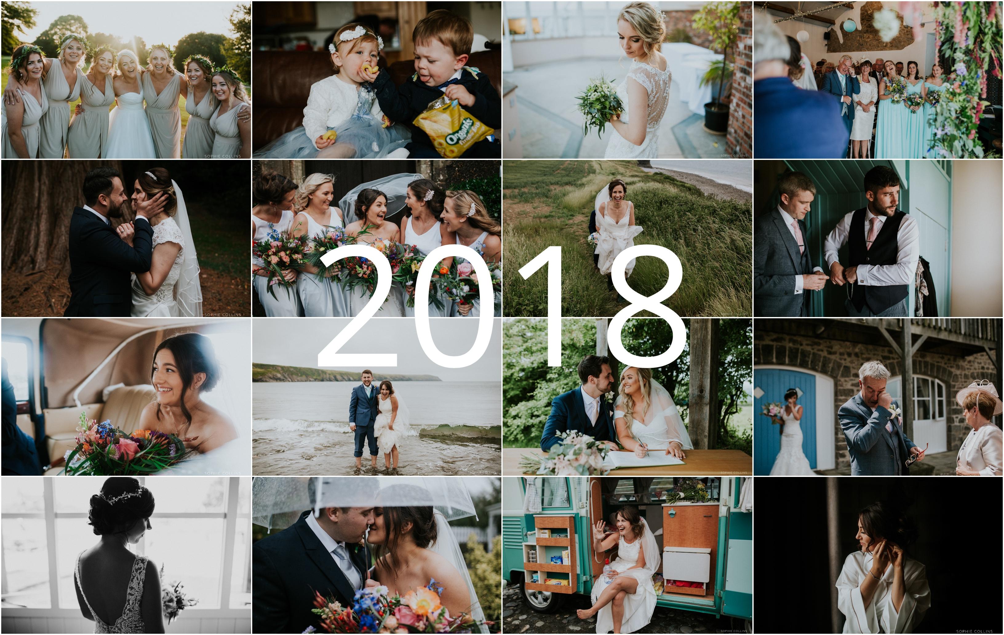 2018 highlights